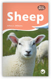 Sheep Leveled Book
