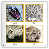 Snow Leopard Big Book