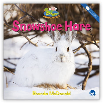 Snowshoe Hare from Zoozoo Animal World