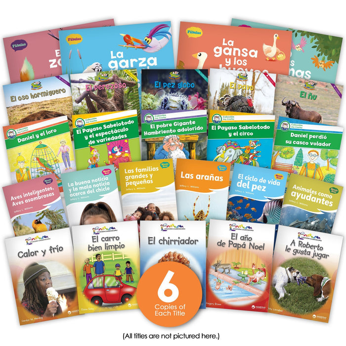 Spanish 1st Grade Guided Reading Set from Various Series
