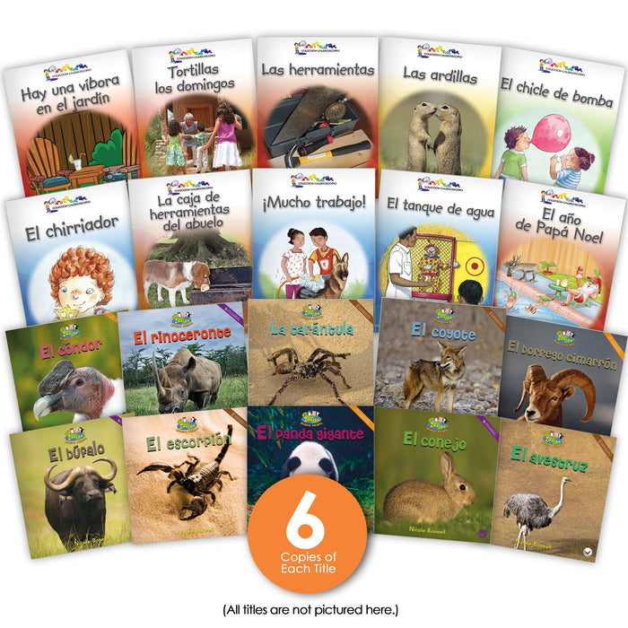 Spanish Level E Guided Reading Set Image Book Set