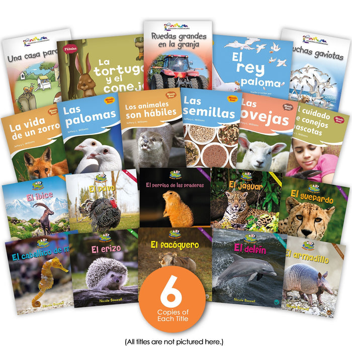 Spanish Level F Guided Reading Set Image Book Set