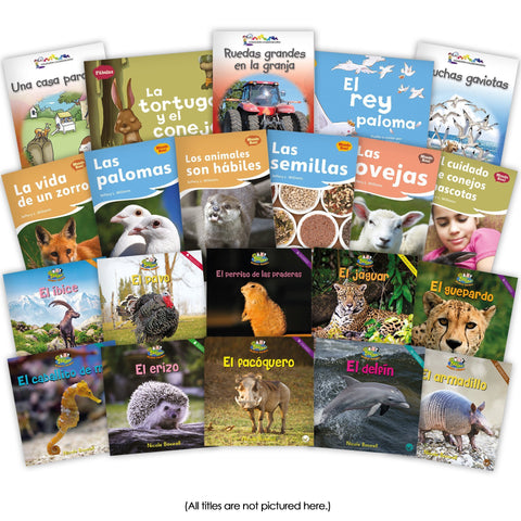 Spanish Level F Set Image Book Set