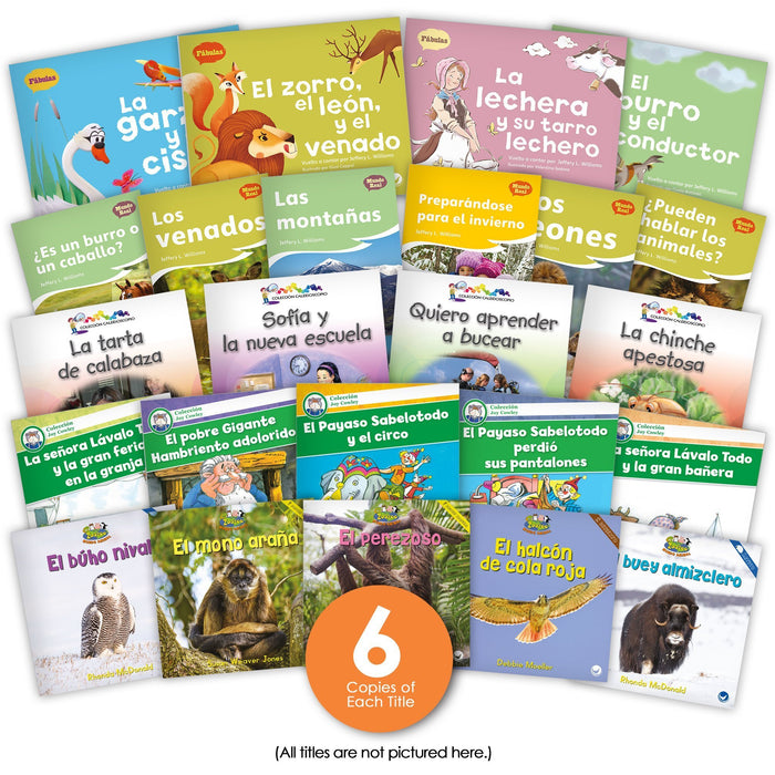 Spanish Level H Guided Reading Set Image Book Set