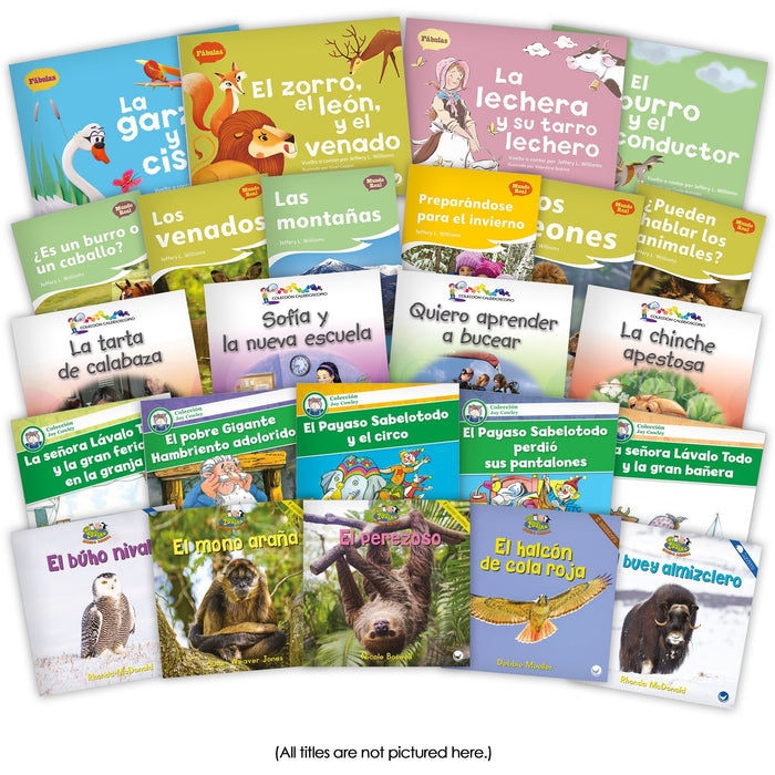 Spanish Level H Set Image Book Set