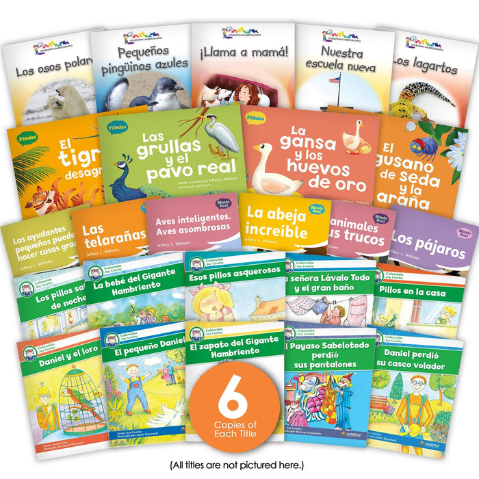 Spanish Level I Guided Reading Set from Various Series
