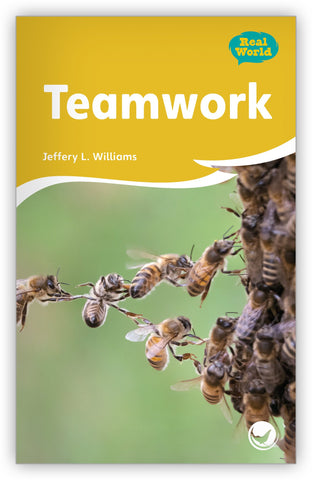 Teamwork from Fables & the Real World