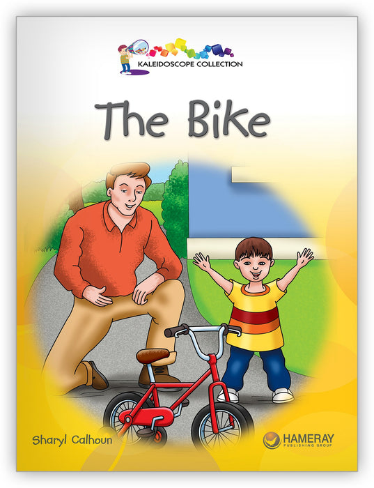 The Bike Leveled Book