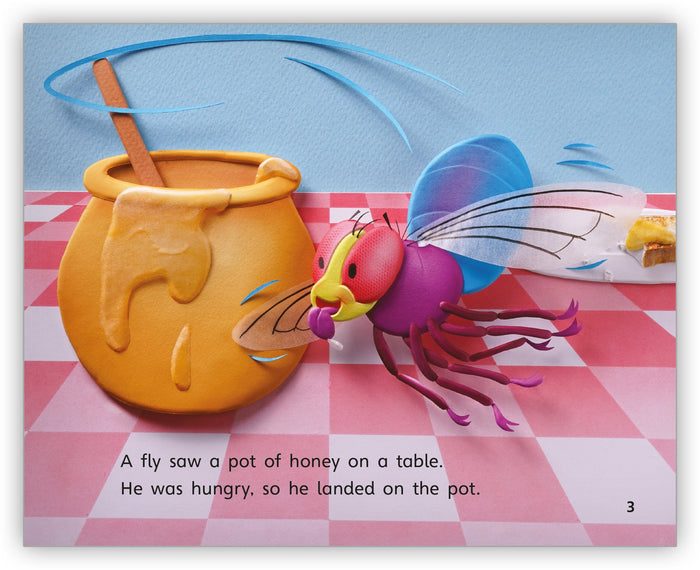 The Fly and the Honey Pot Leveled Book