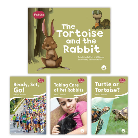 The Tortoise And The Rabbit Theme Set Image Book Set