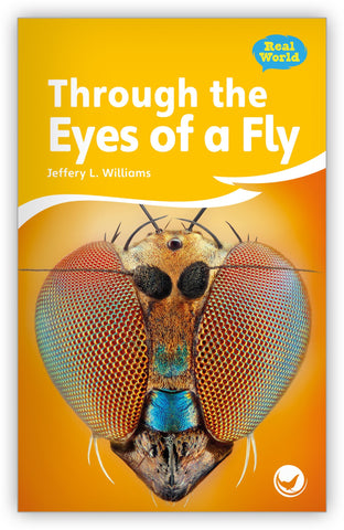 Through the Eyes of a Fly from Fables & the Real World