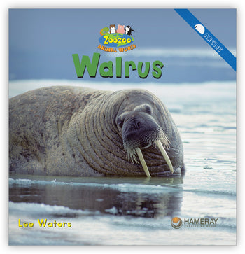 Walrus from Zoozoo Animal World