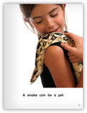 What Is a Pet? Big Book