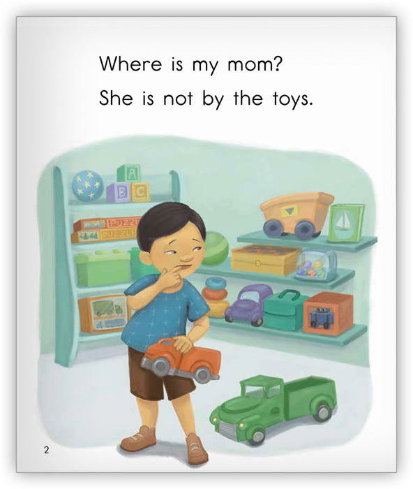 Where Is My Mom?