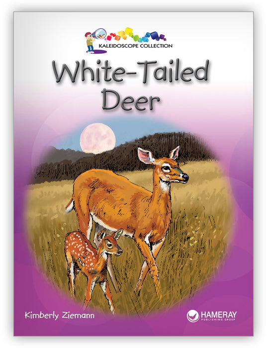 White-Tailed Deer from Kaleidoscope Collection