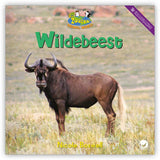 Wildebeest from Zoozoo Animal World