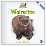 Wolverine from Zoozoo Animal World