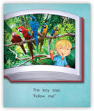 Zoo Book from Joy Cowley Early Birds