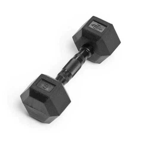 Element Fitness Commercial Rubber Hex Dumbbells 8 lbs