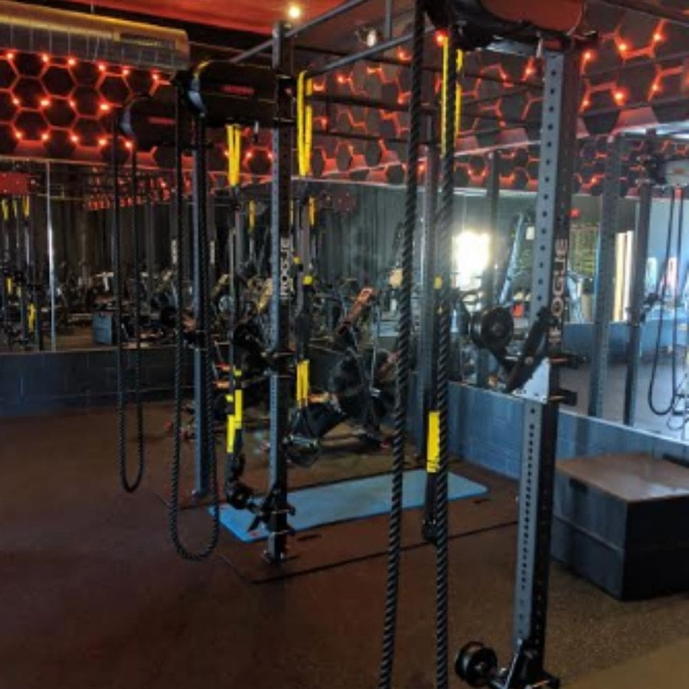 Marpo Kinetic X8 MOUNTABLE Rope Trainer Side View Group