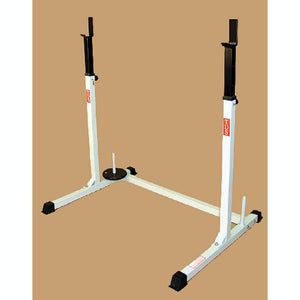 TDS H-93132 Squat Rack 3D View