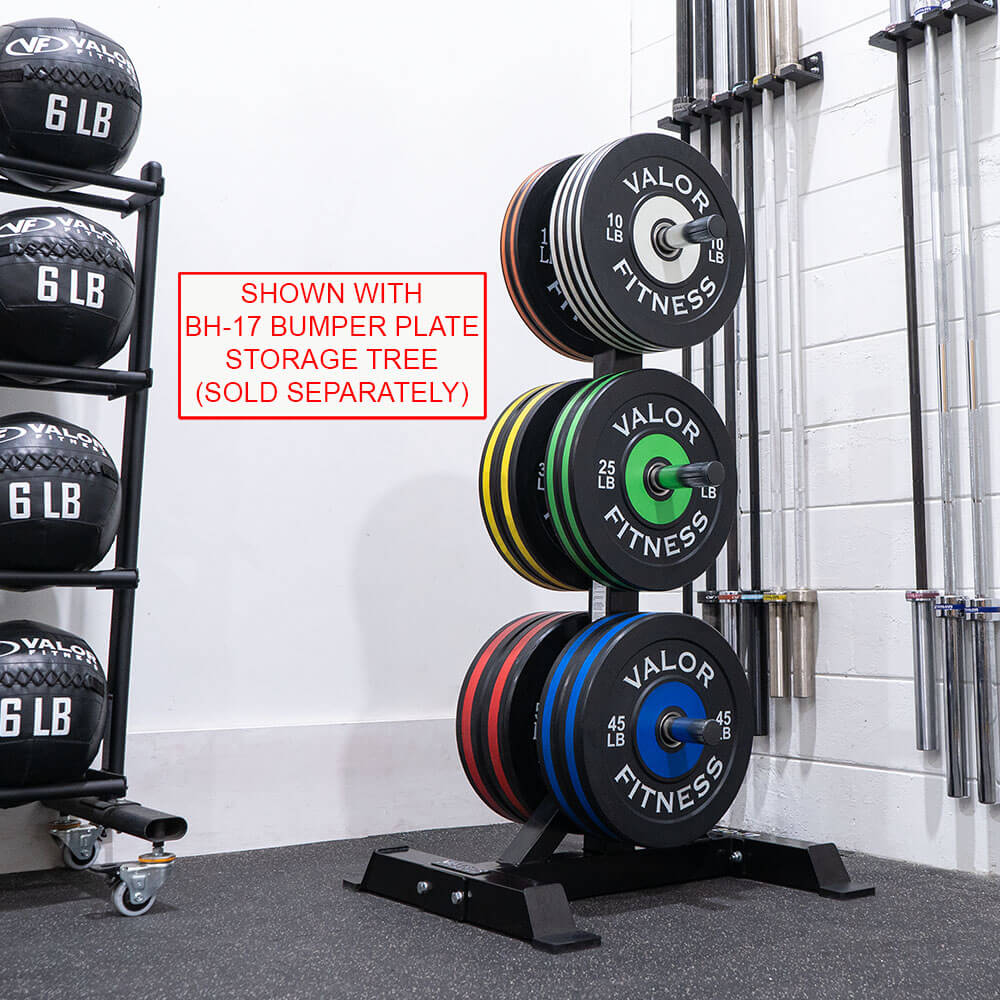 Valor Fitness Bumper Plate Pro BPP With Bupper Plate Storage