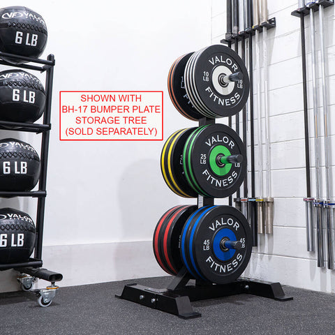 Image of Valor Fitness Bumper Plate Pro BPP With Bupper Plate Storage