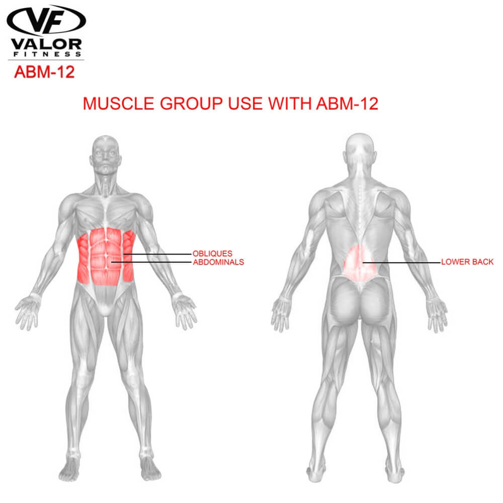 Valor Fitness ABM-12 Ab Mat Muscle Group