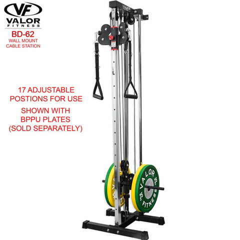 Valor Fitness BD62 Wall Mount Cable Station 3D View