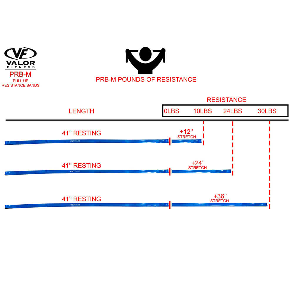 Valor Fitness PRB-M-Blue Pull Up Resistance Bands Pounds Of Resistance