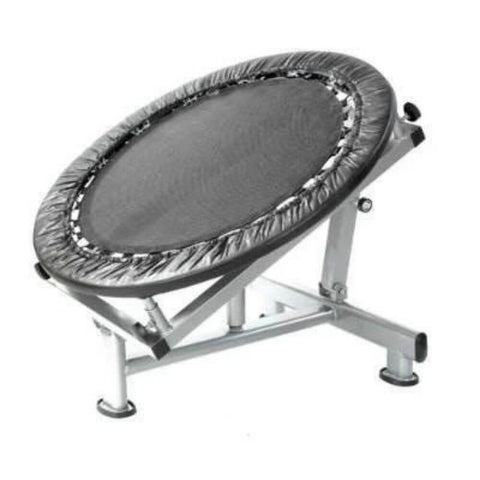 Image of Xtreme Monkey XM-3303 Medicine Ball Rebounder 3D View