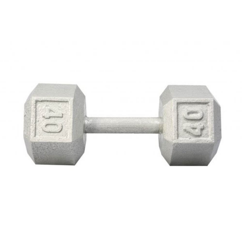 York Barbell 3461 Cast Iron Hex Dumbbells 40lb