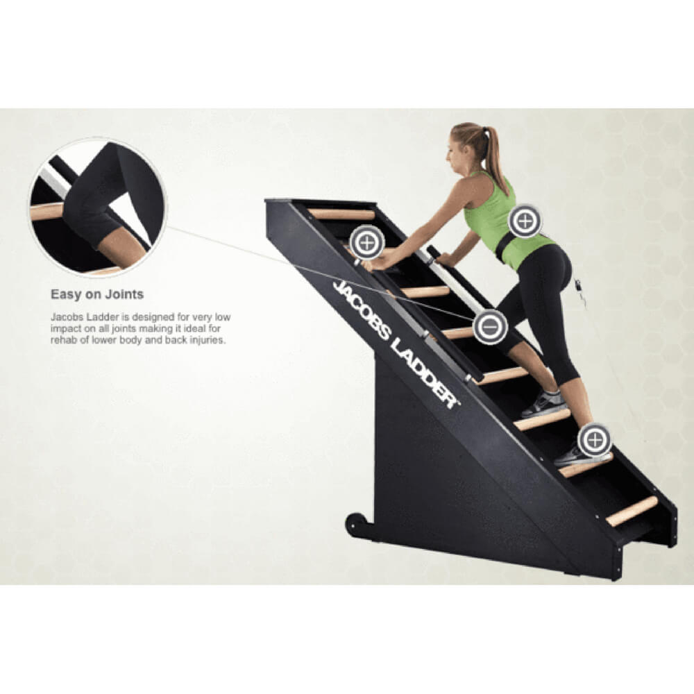Jacobs Ladder Continuous Cardio Exercise Machine JL