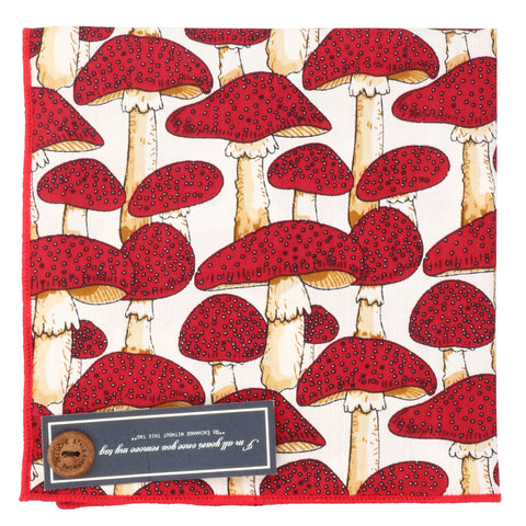 Quirky Mushrooms Off White and Red Colored Pocket Square for Men