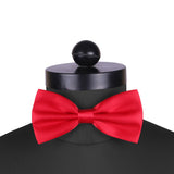 Sultry Red Cummerbund and Bow Tie Set