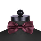 The Azured Wine Coloured - Cummerbund and Bow Tie Set