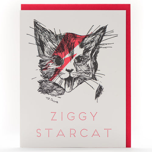 Card: Ziggy Cat