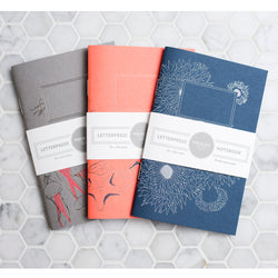 Notebook: Aquatic Theme Small (Set of 3)