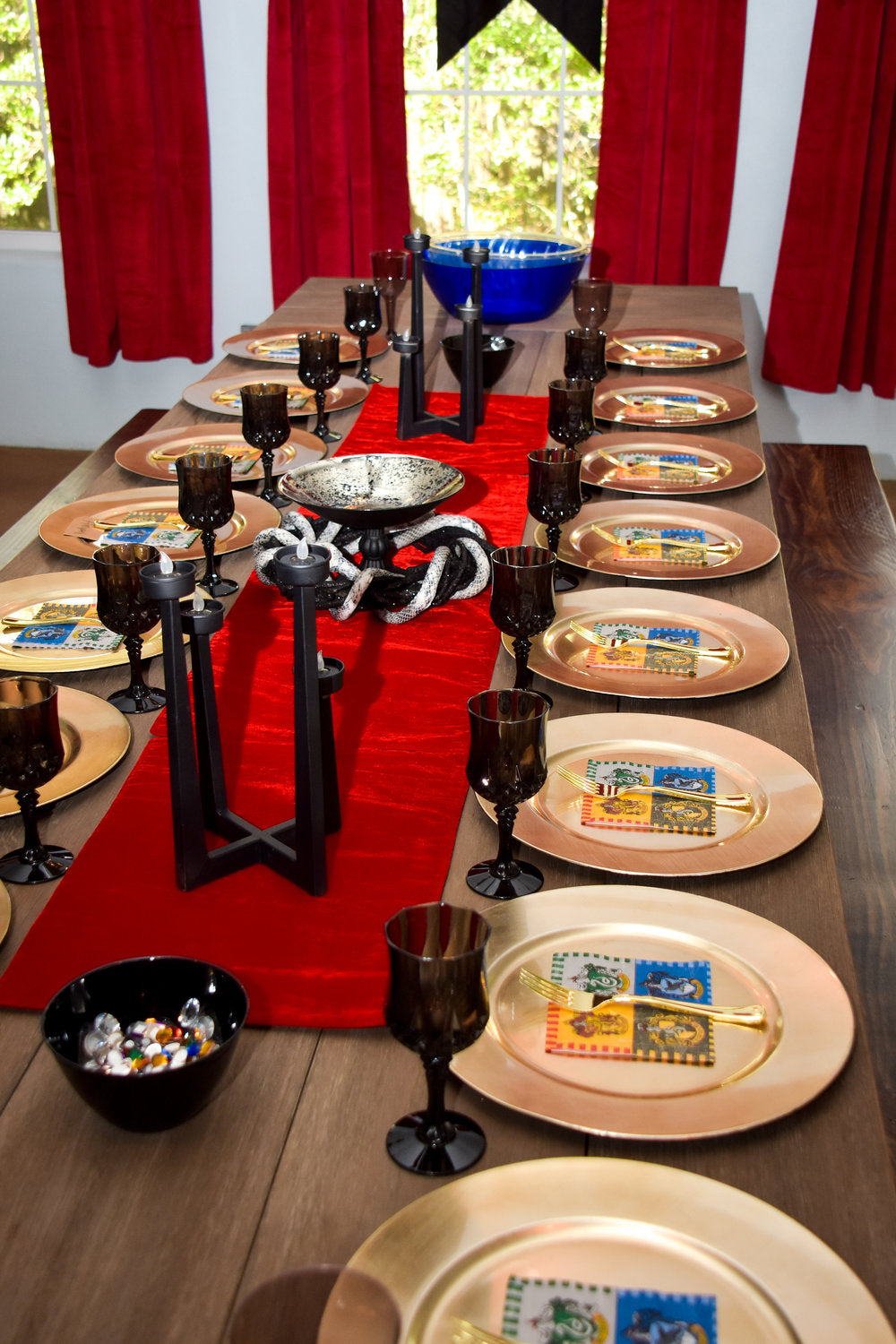 Overall view of Harry Potter decorated party tablesetting