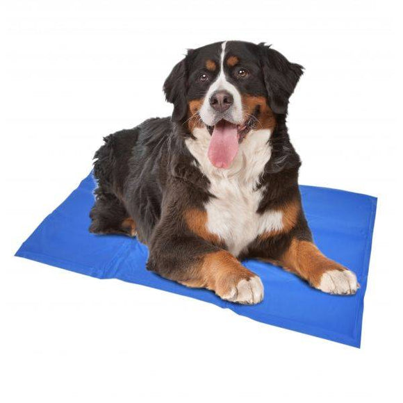 Cooling Mat/Chill Pad