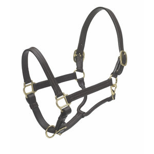 Triple Stitch Leather Show Halter