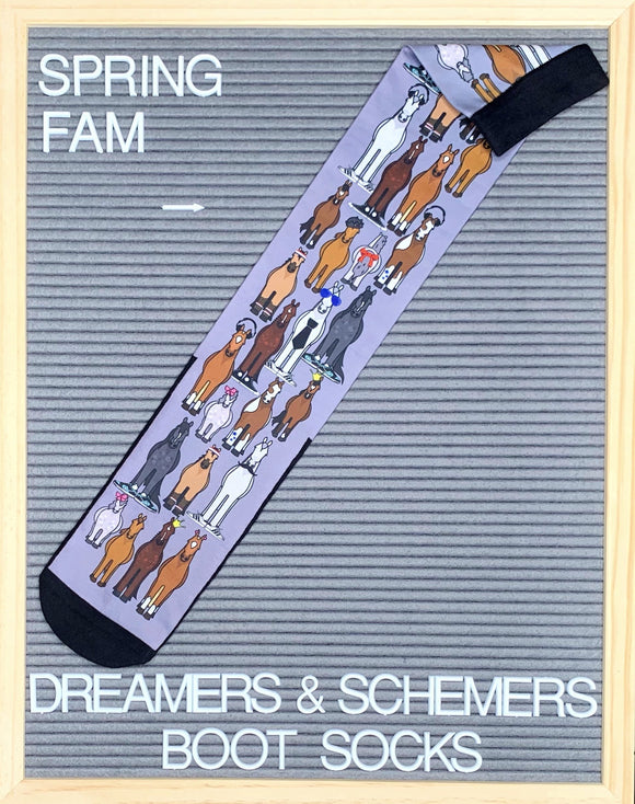 Dreamers & Schemers Spring Fam Boot Socks