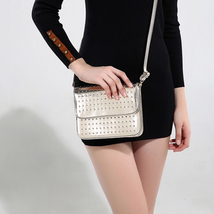 silver studded gold metallic bag edgability model view