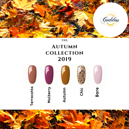 New! Goddess Autumn 2019 Collection