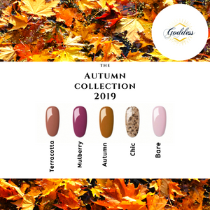 Goddess Autumn 2019 Collection
