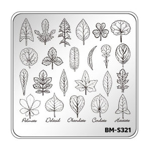 Botanicals: Sunlit Study (BM-S321)  Stamping Plate