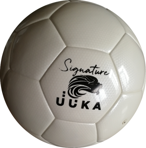Permanently Inflated Soccer Football in High Quality Hand Stitched Laminated TPU