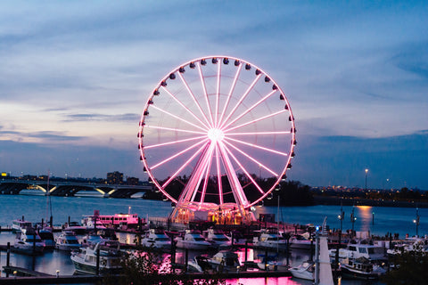 The Ferris Wheel at the National Harbor in Oxon Hill, Md
