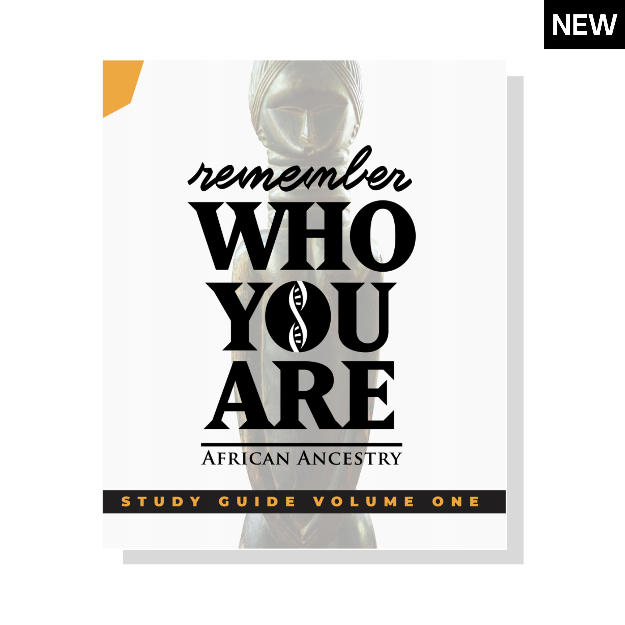 Remember Who You Are Study Guide Vol. One