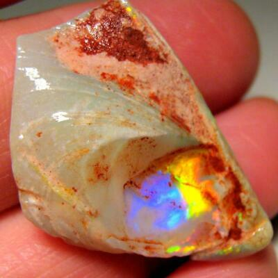Rare Fossil Australian Gem Rough Opal Bivalve Aquarium Ornament Specimen 21ct